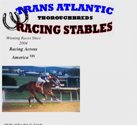 Trans Atlantic Racing Stables - Thoroughbred horse racing ...